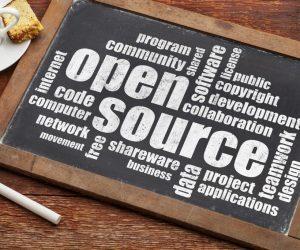 Open Source Business Strategies