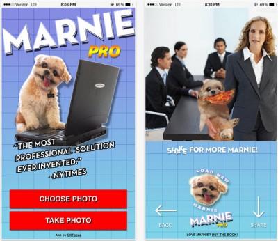Marnie the Dog App
