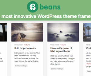 5 Reasons to Check Out Beans for WordPress Themes