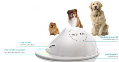 cleverpet game console for pets