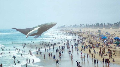 magic leap whale snapmunk