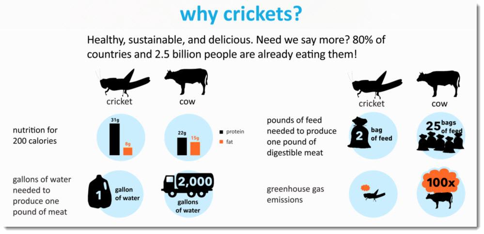 Six Foods' benefit of cricket flour