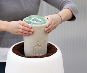 Bios Incube Uses Cremated Remains to Grow Trees