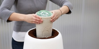 turning cremated remains into tree with Bios Incube
