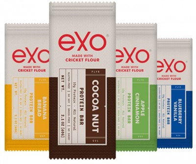 exo protein bars regular