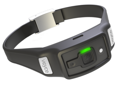 voyce fitbit for dogs