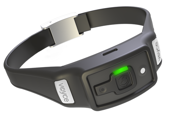 Voyce smart dog collar