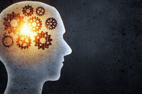 brain training games represented by cogs in a head