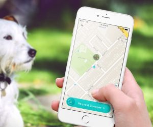 Pooper App Finds People To Pick Up Your Dog's Poop For You, And It Seems Real