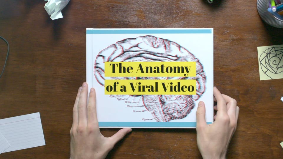 still from the online course, The Anatomy of a Viral Video