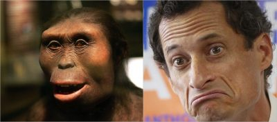 Lucy compared to Anthony Weiner