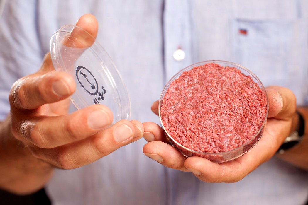 lab-grown chicken meat in a petri dish