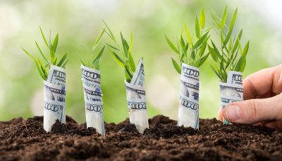 planted money representing equity crowdfunding platforms