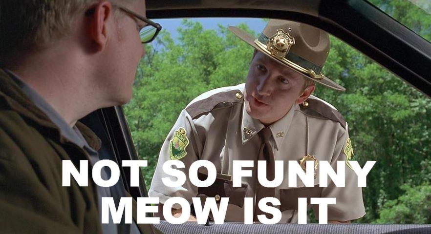Super Troopers character saying it's not so funny meow, is it