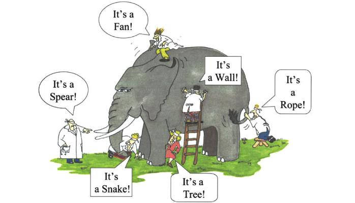 cartoon of many people unable to identify an elephant representing software startup culture