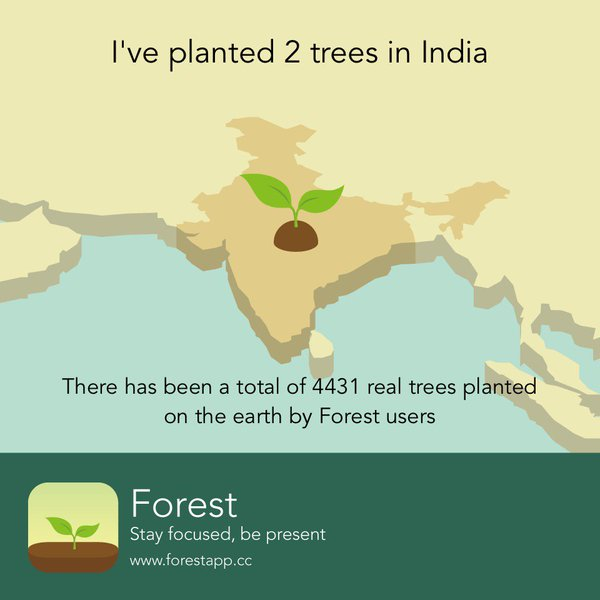 Forest productivity app showing charity impact