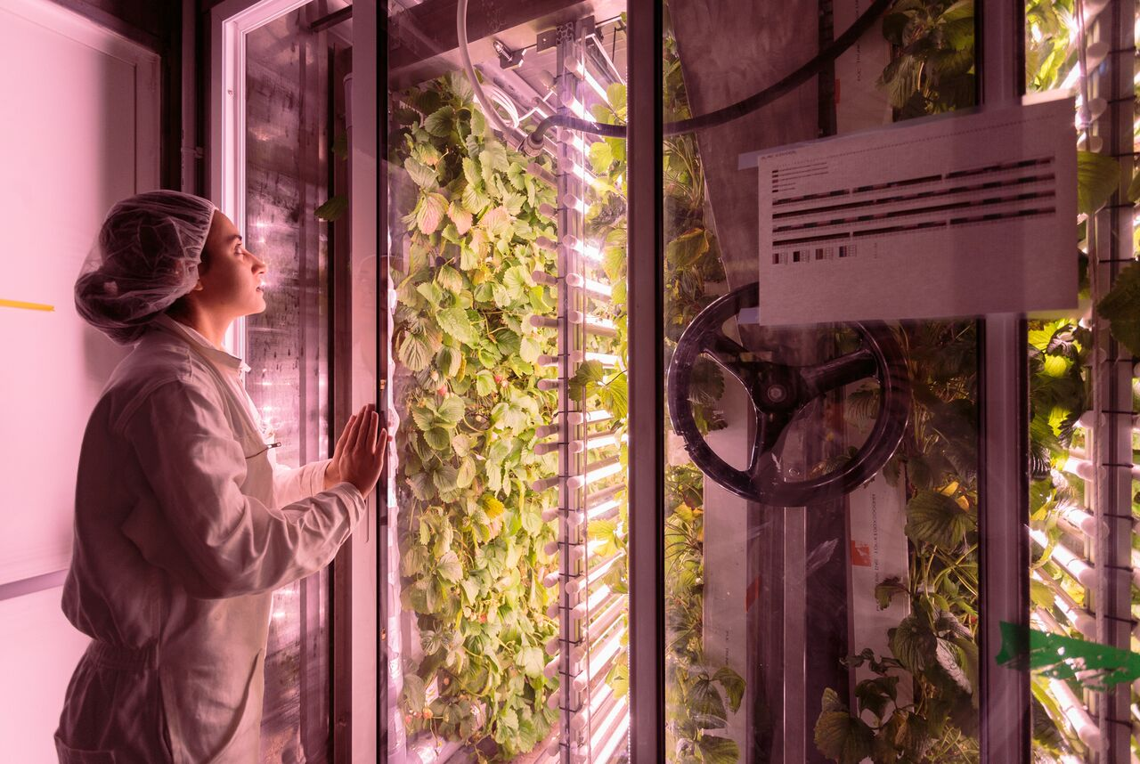 AgriCool Got $4.3M To Build Organic Farms In Shipping Containers