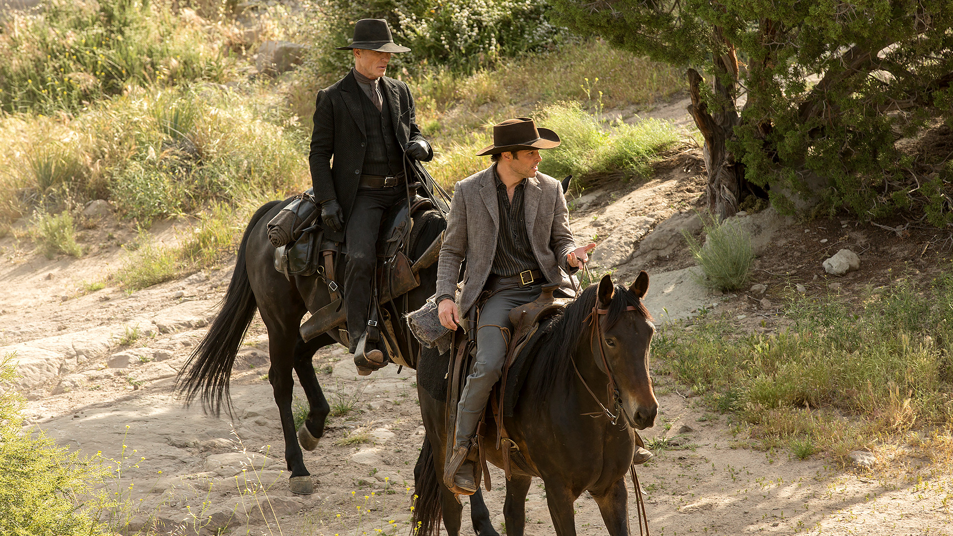 westworld episode 8 recap man in black and teddy