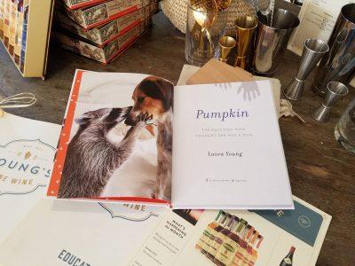 The Story Behind Pumpkin, The Instagram Celebrity Raccoon