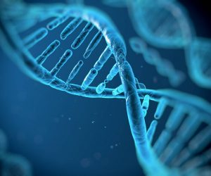 ToolBox Genomics Helps You Make Sense Of Your DNA Testing