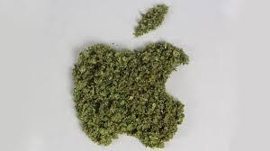 weed apple