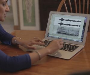 VocalID Creates Synthesized Voices For The Speech-Impaired Via Crowdsourced Voicebank