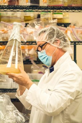 New Startup Uses Mushroom Extracts As A Natural Bitter Blocker