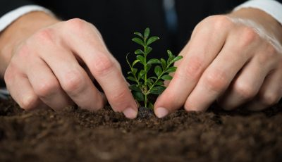 5 Green Startups Working To Make Our World A Better Place